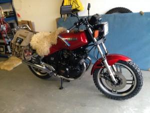 Yamaha XS 21
